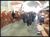Longhorns walking into DKR-TMW
