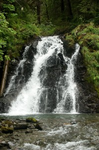 Salmon Falls in Juneau